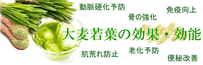 最高品質 最高級 青汁 『三八』 さんぱち 九州産 八女産抹茶 八女産大麦若葉 サプリメント
