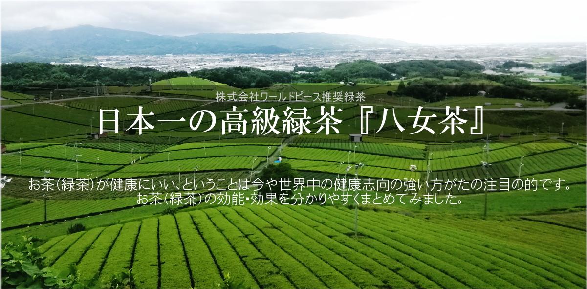 三八 さんぱち 緑茶 抹茶 健康 効能 効果 八女茶 八女産 九州産 福岡産 青汁 サプリメント