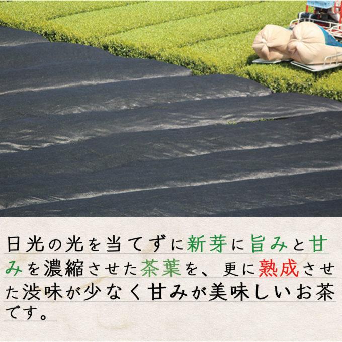 yamecha tea green yamefukuoka yametea fukuoka ja japanesetea 4